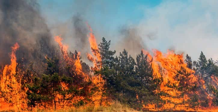 Munn Insurance How to Prepare for a Wildfire